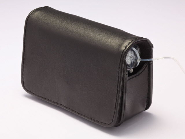 Classic Leather Case